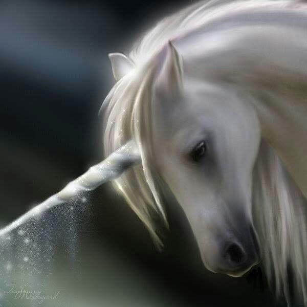 When Speaking to a Unicorn- Kindra M. Austin and StephenFuller